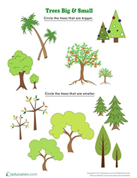 short essay on trees Archives - Exploreabccom